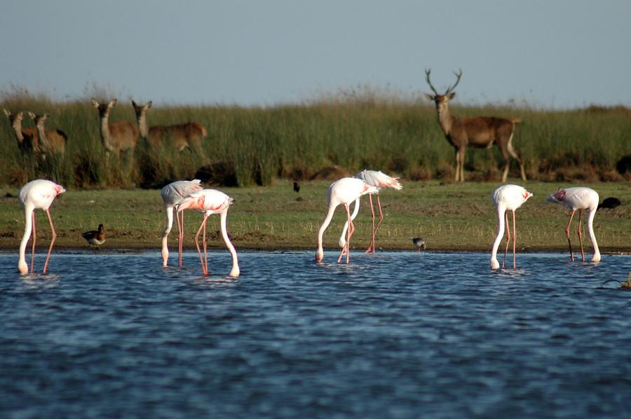 turismo sostenible Huelva